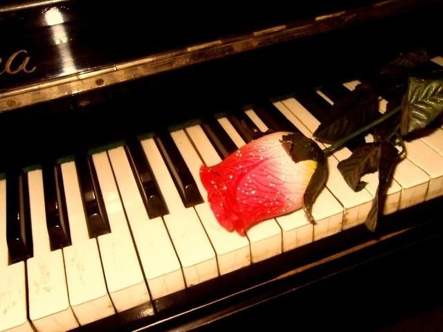 Новый учитель игры на пианино